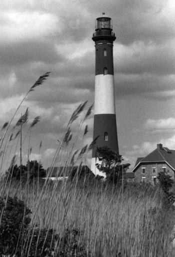 Landscapes (Black&White)